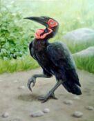 Кафский рогатый ворон, 2005 г, Марина Ефремова, Птицы, Московский зоопарк