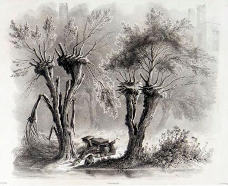 Смоленск, на правом берегу Днепра, 19 августа 1812 г. (Убитый егерь).