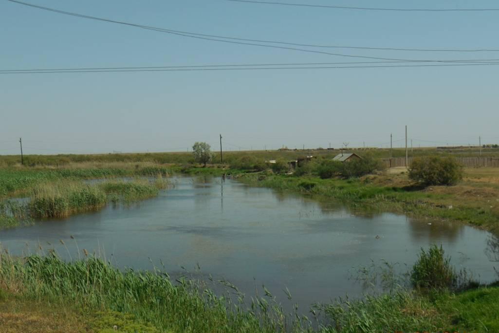 Восточная Калмыкия (Лаганский район), май 2014,