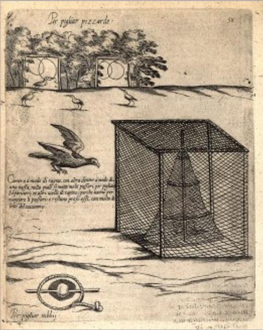 Способы расставления силков для ловли ястреба и установки ловушки для коршуна. Из первого (1622 г.) издания работы итальянского философа и натуралиста Джованни Пьетро Олины (1585-1645)