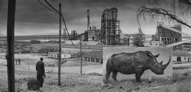 Ник Брандт. Фабрика и носорог, 2014