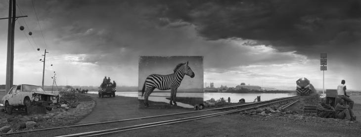 Ник Брандт. Дорога к фабрике и зебра, 2014