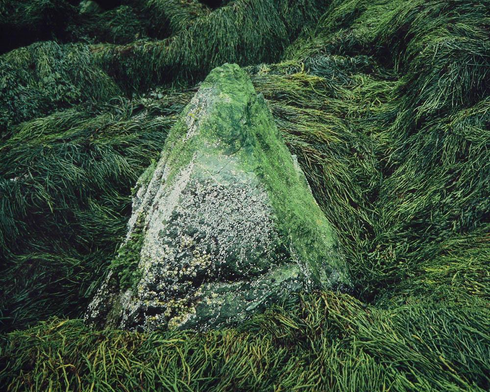 Sea Stone, New Brunswick