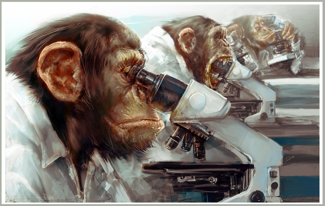 Дэмиэн Бузугбе (Damian Buzugbe) Три очень мудрых обезьяны