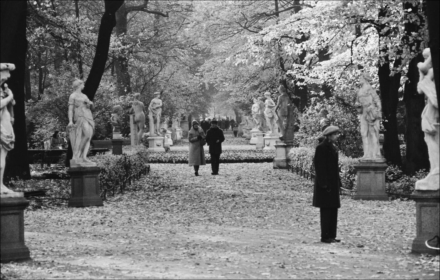 Сергей Подгорков Летний сад