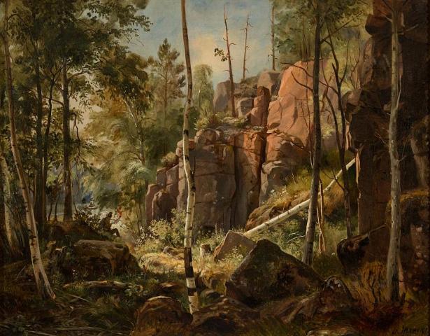 Шишкин И.И. Вид на острове Валааме (Местность Кукко). 1859 (60?)