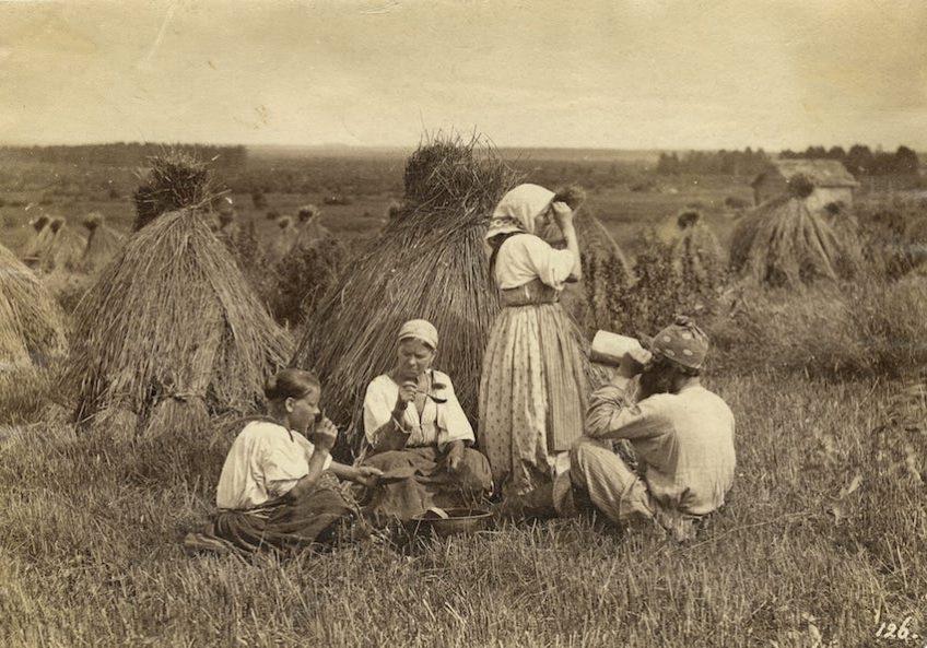 Симбирская губерния. Крестьянский обед во время жатвы Вильям Каррик 1870-е