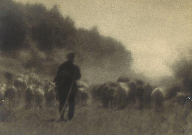 Николай Андреев. Пастух и стадо