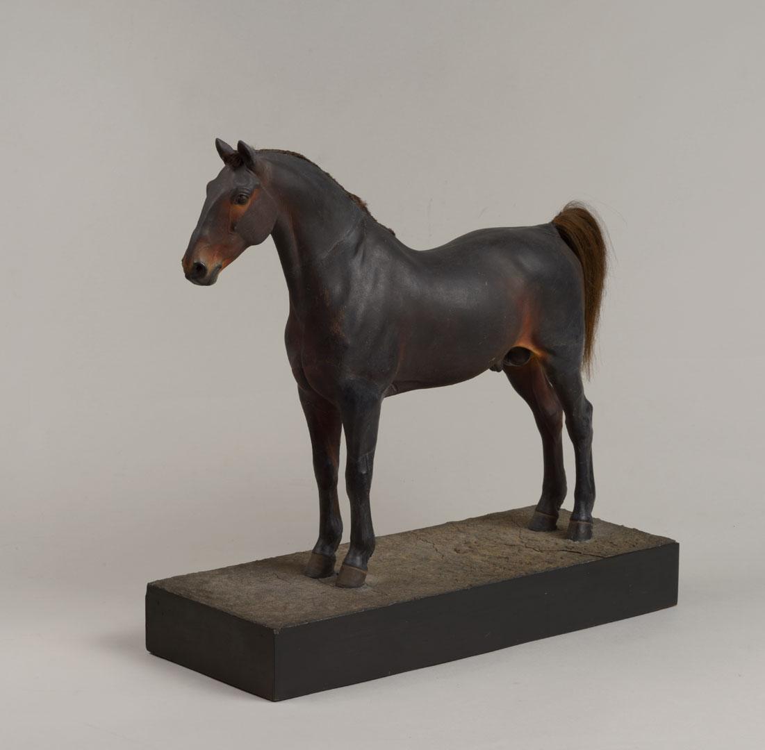 Петр Клодт. Английская фермерская лошадь